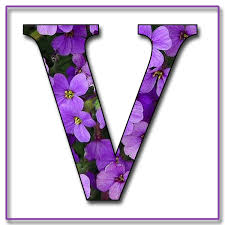 V Name Alphabet Images Pictures Symbols Letters Name Tag