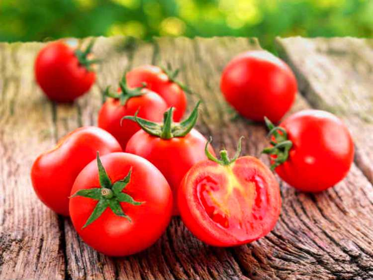 Gardening Tips : Grow Juice and Healthy fresh Tomatoes at Home