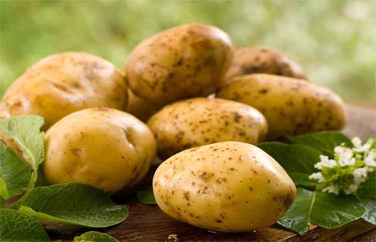 Use homemade aloo pack for thick and beautiful hairs