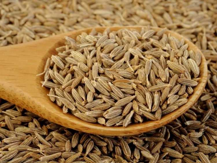 Cumin helps in weight loss, know about its amazing benefits