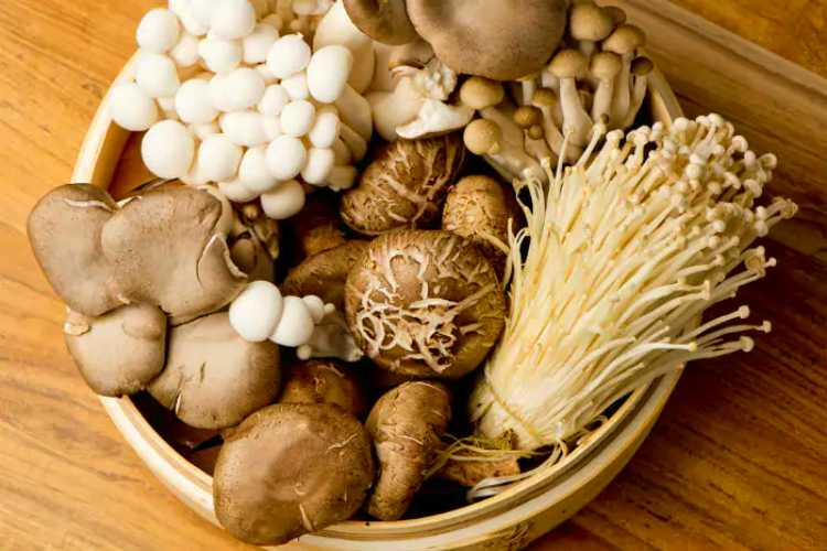 Use mushroom face pack for beautiful and glowing skin, know the steps