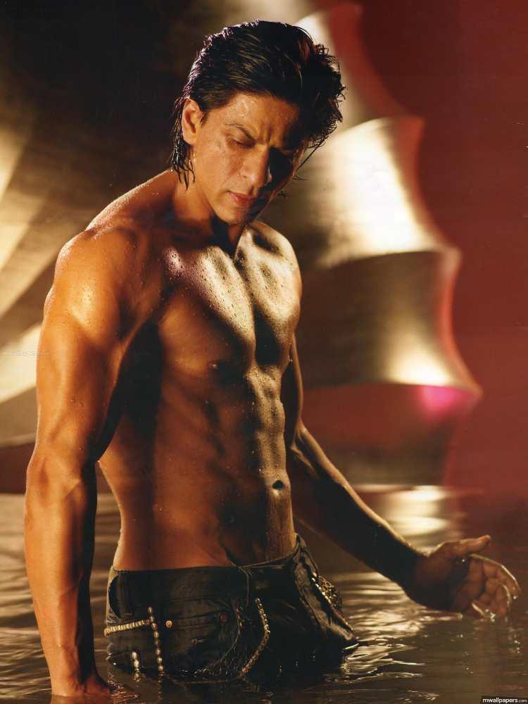 SRK Body Handsome Shahrukh Khan biography