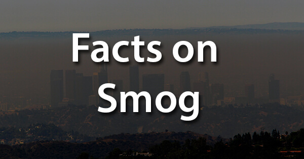 Facts on Smog, स्मॉग पर तथ्य