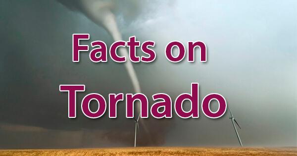 Facts on Tornado, बवंडर पर तथ्य