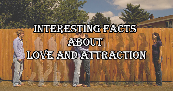 Interesting Facts About Love And Attraction,