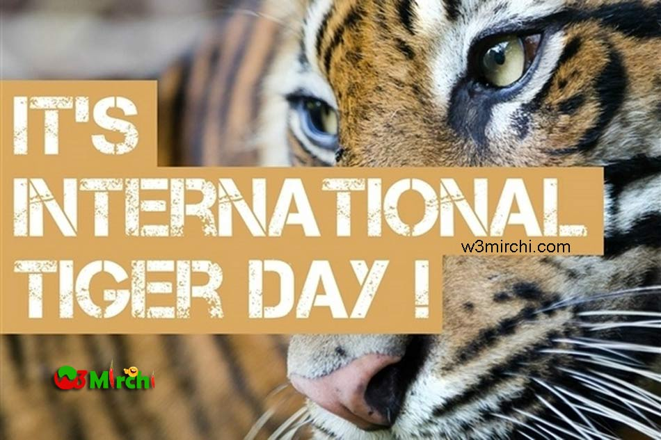 International Tiger Day Picture
