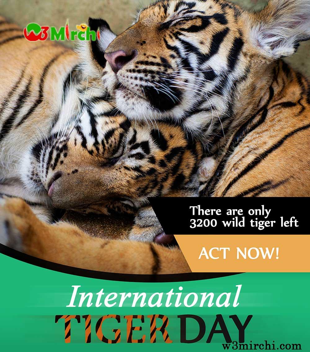 International Tiger Day Poster
