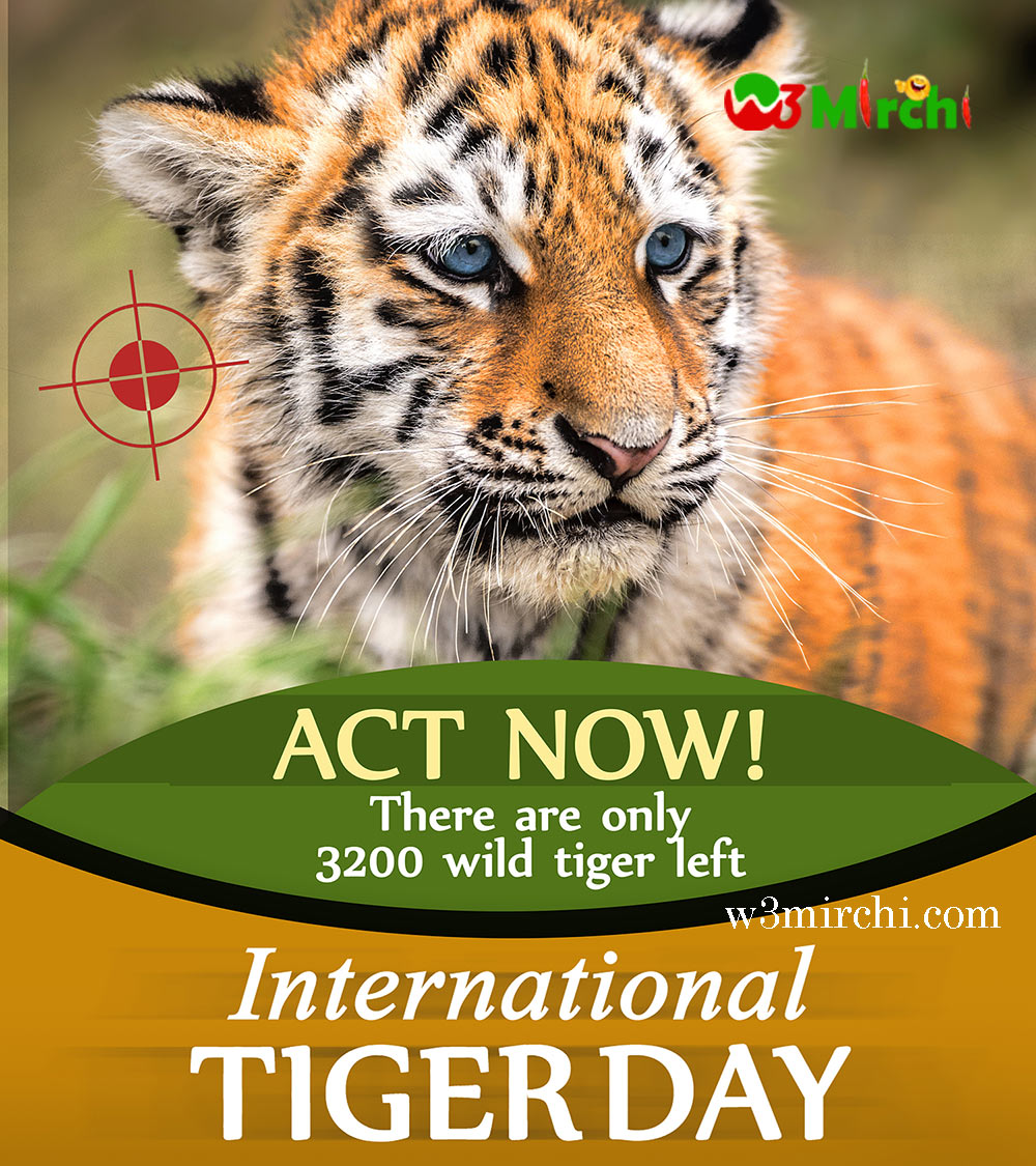 International Tiger Day Picture with quote