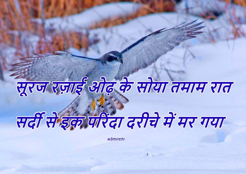 सर्दी से इक परिंदा दरीचे में मर गया Sardi Dard Bhari Shayari