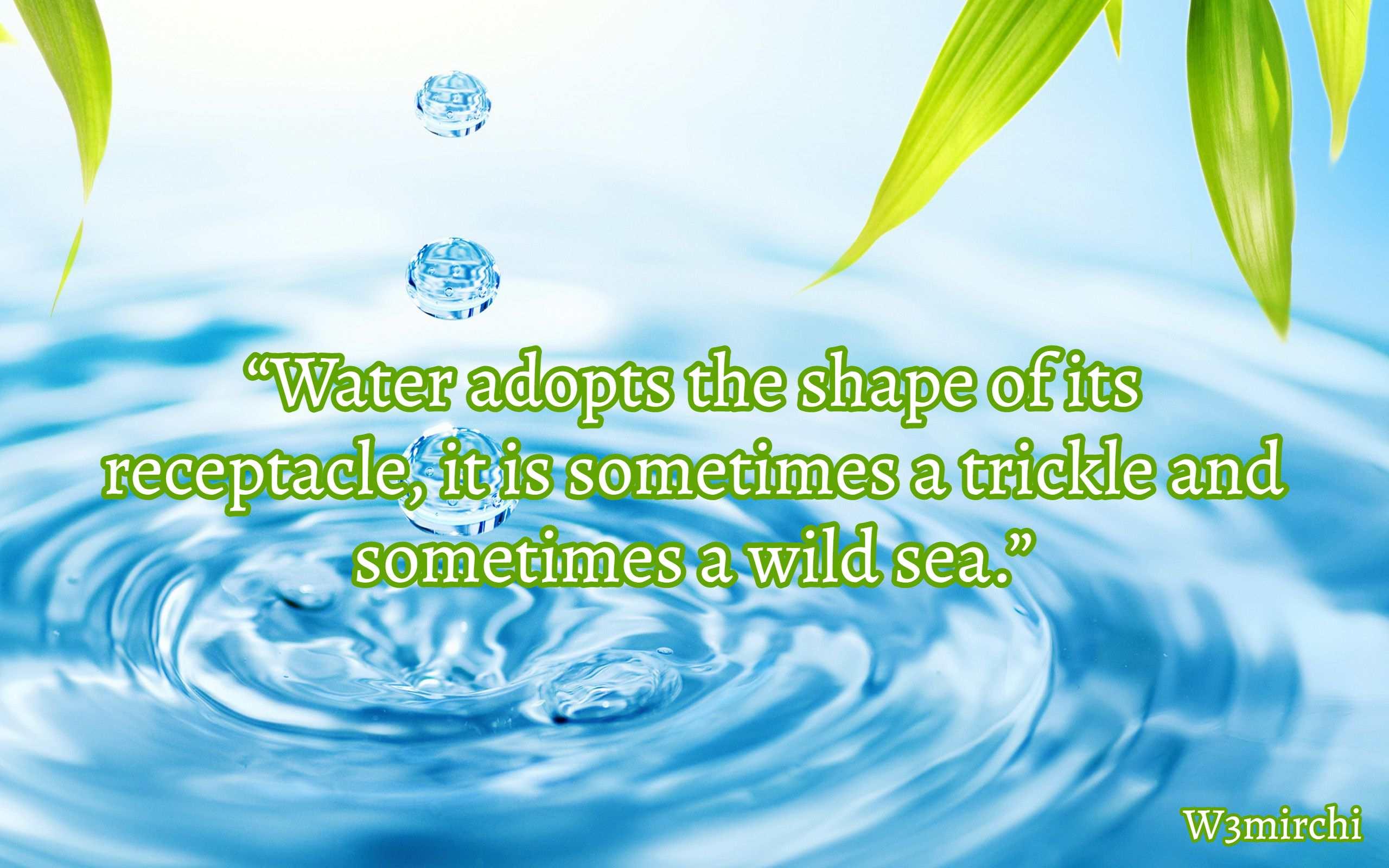 A wild Sea Quotes