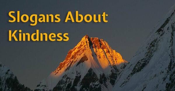 Slogans About Kindness