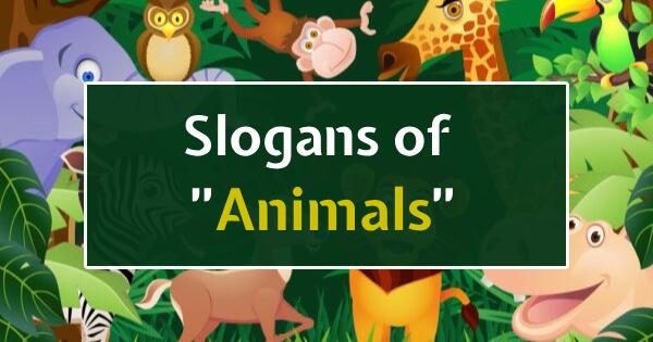Slogans of Animals
