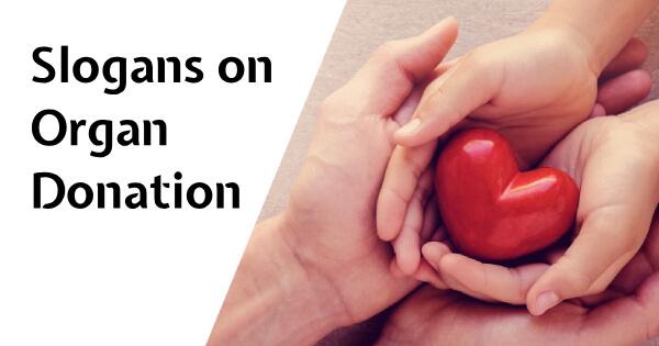 Slogans on Organ Donation