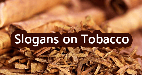 Slogans on tobacco
